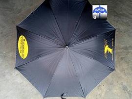 ร่มดำสกรีนร่ม